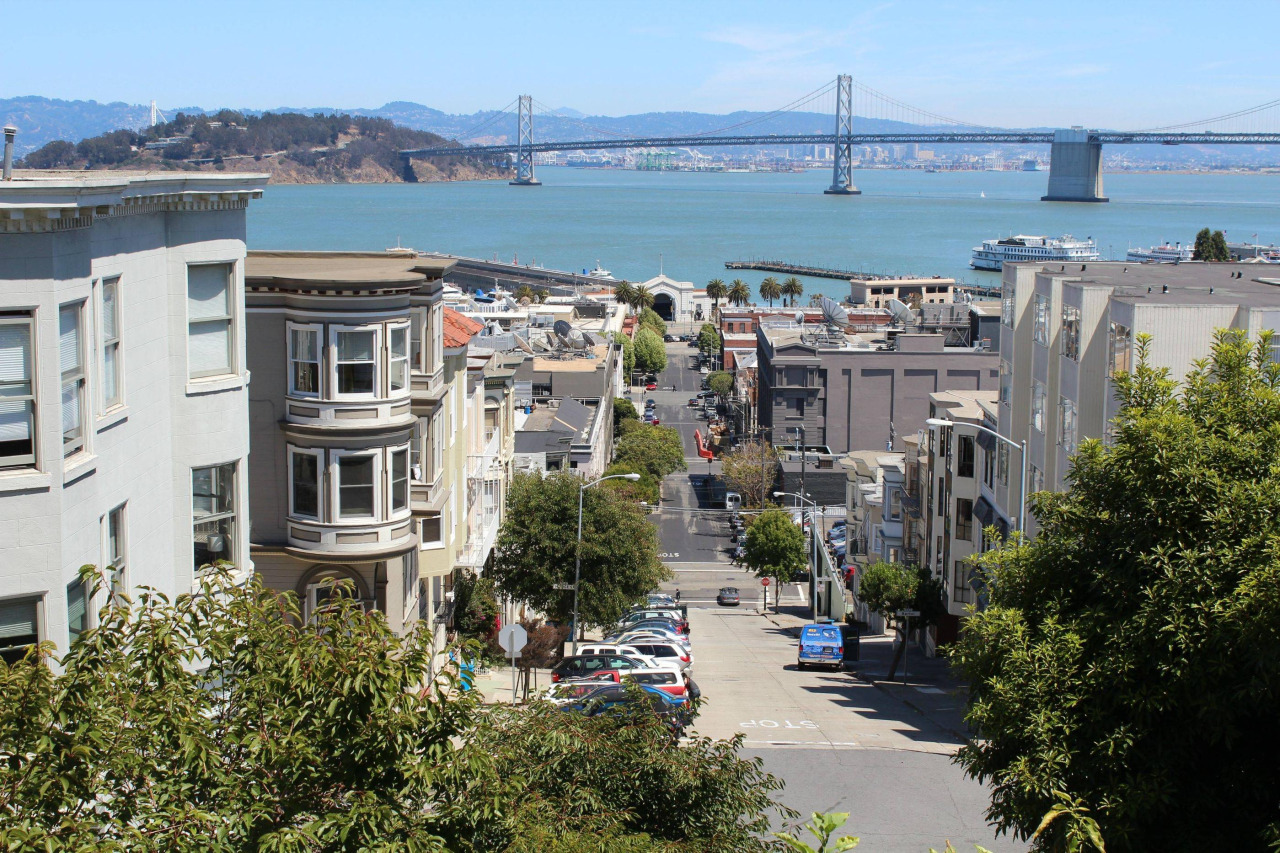 The Bay Bridge from Telegraph Hill.jpg